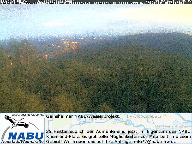 Weinbiet-Webcam (Pfälzerwald)