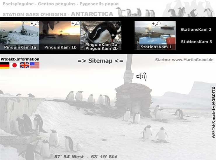 online antarctida Webcam